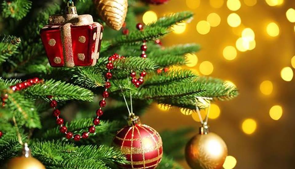 Origen del árbol de Navidad y ¿Por qué se celebra el 25 dediciembre?