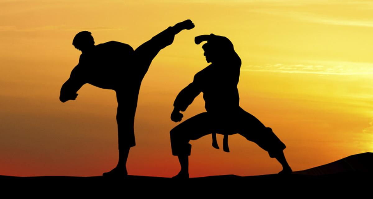 Karate, su desaparición del cine, Alexandra Grande, dónde y porquéaprenderlo