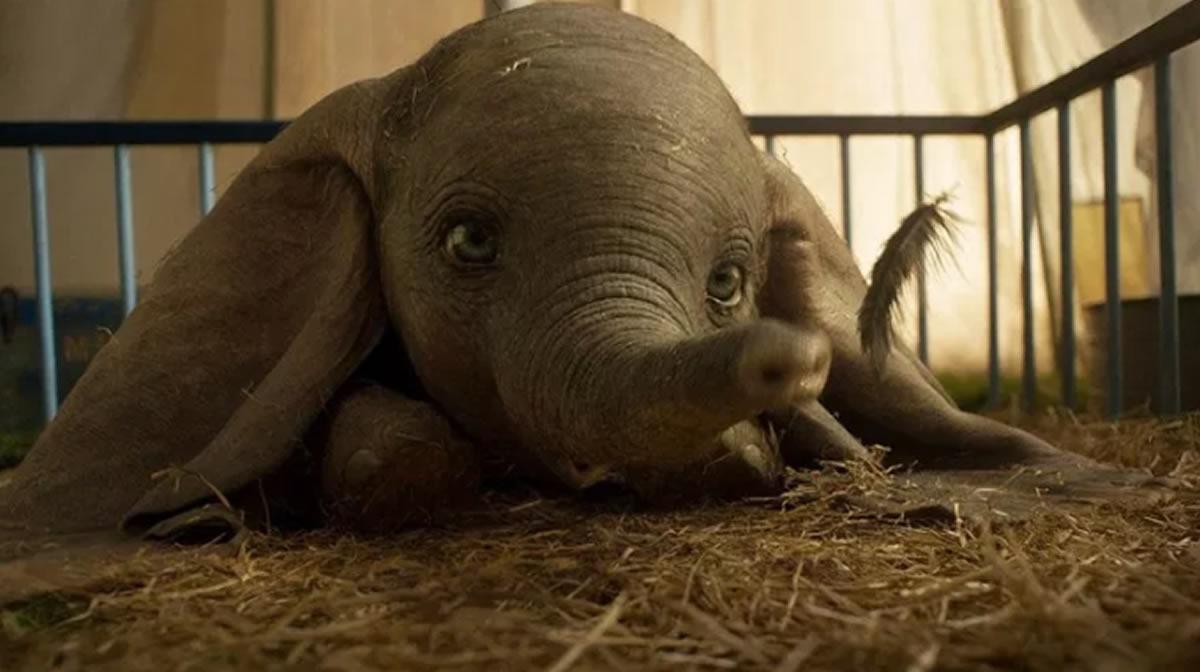 Dumbo vuelve a volar en los cines, ¿qué otros filmes acompañan alelefante?